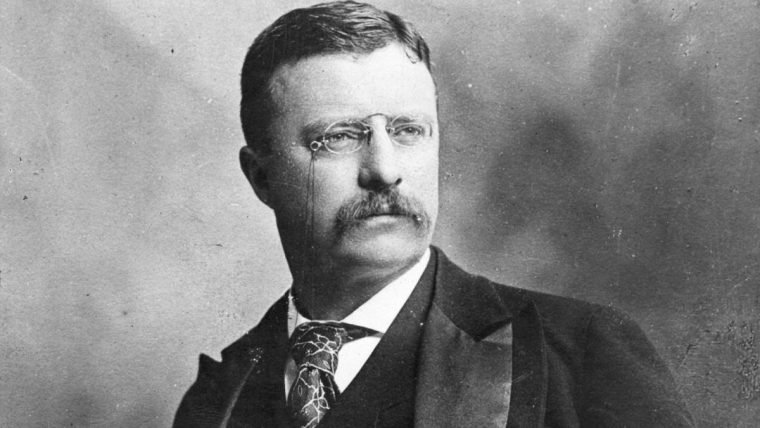 Theodore Roosevelt: The Man with the Muck-rake